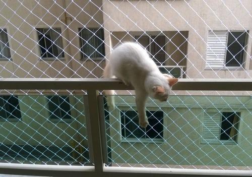 filet de protection balcon pour chat